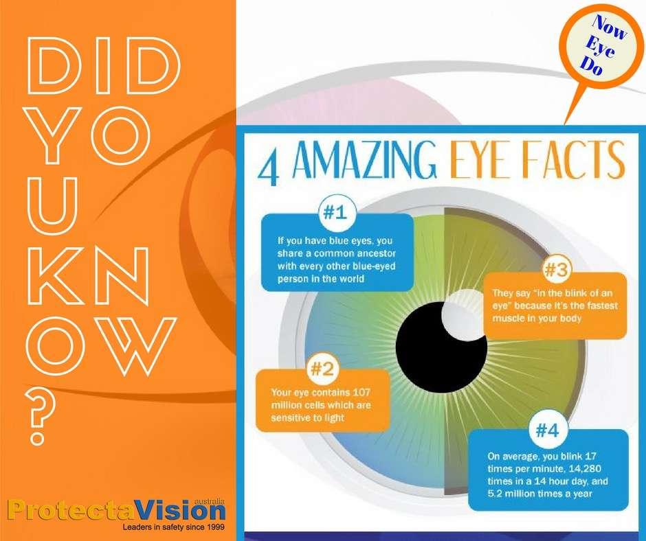 Fun Fact Friday! - Protecta-Vision Australia